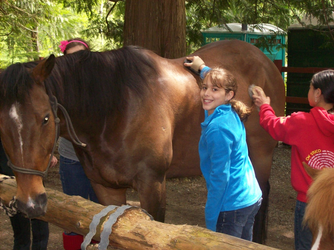 Lang's Horse and Pony Farm -